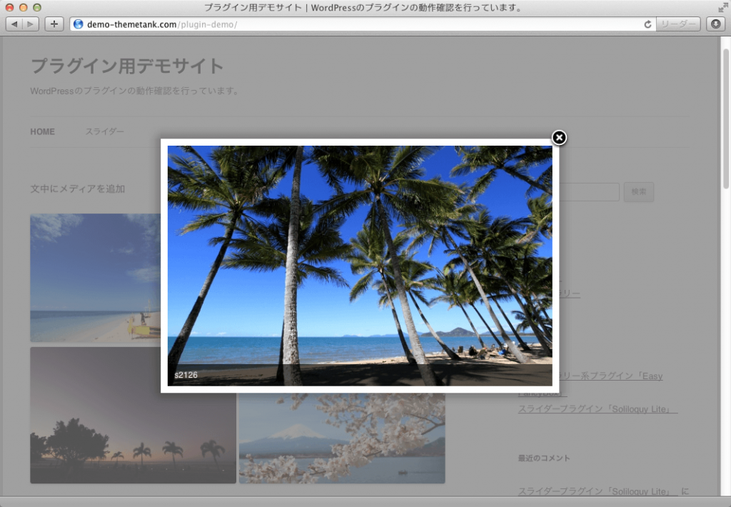 WordPressプラグイン「EasyFancyBox」のデモ画面2
