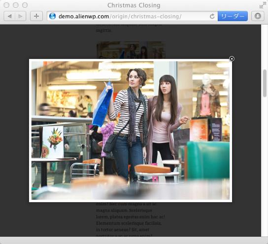ブログ-写真用の無料WordPressテーマ「orijin」のlightboxのイメージ