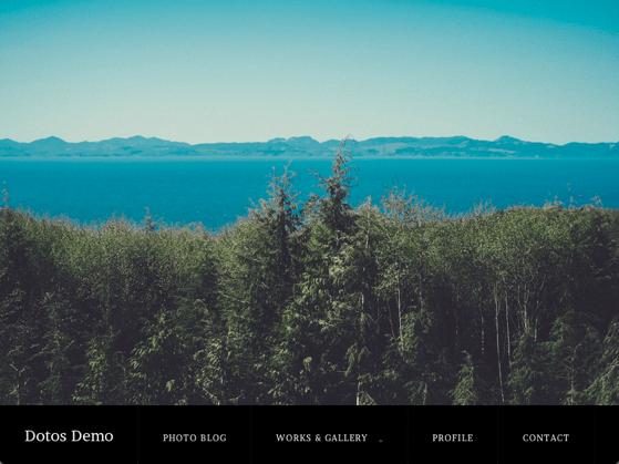 写真ギャラリー用の無料WordPressテーマ「dotos」のデモサイトイメージ