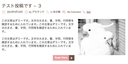 ブログ用の無料WordPressテーマ「chooko」のテーマ独自のカスタマイズメニュー3