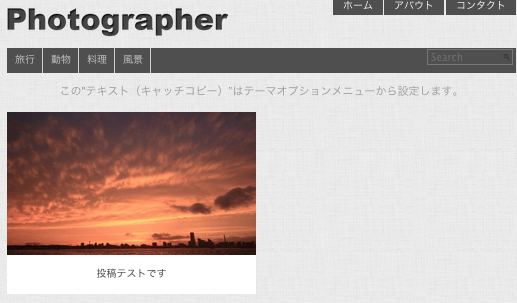 写真ギャラリー-ポートフォリオ用の無料WordPressテーマ「Photographer」の投稿ページの作成方法3