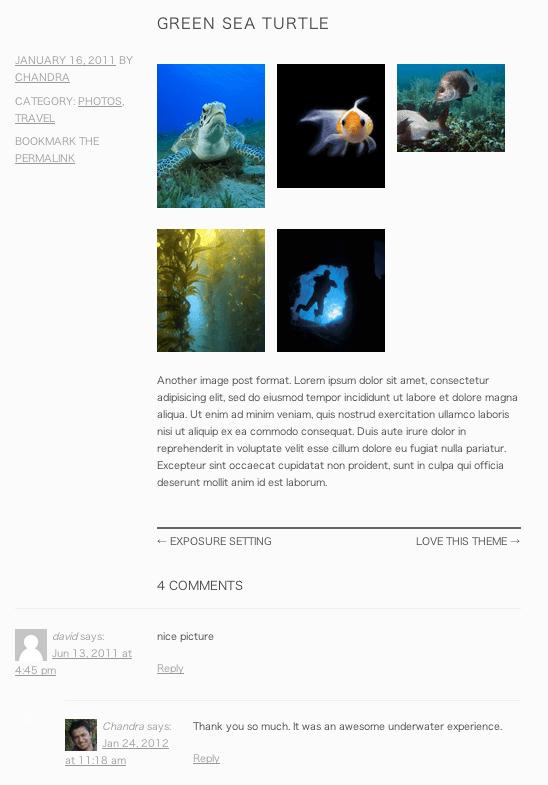 ポートフォリオ用の無料WordPressテーマ「snaps」の投稿ページデザイン