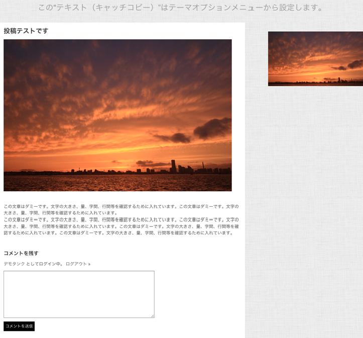 写真ギャラリー-ポートフォリオ用の無料WordPressテーマ「Photographer」の投稿ページの作成方法4