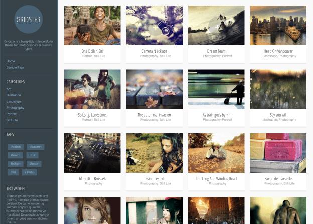 写真ブログ用の無料WordPressテーマ「gridster-lite」のトップページイメージ