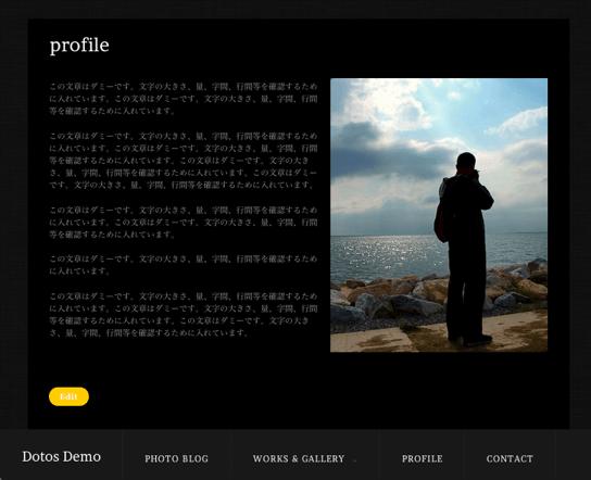 写真ギャラリー用の無料WordPressテーマ「dotos」の固定ページのデザイン3