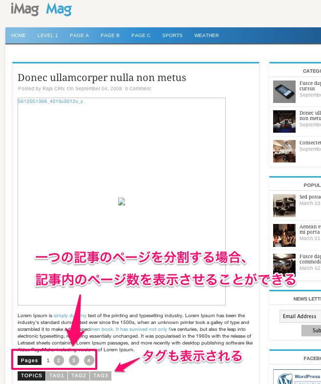 ニュースメディア用の無料WordPressテーマ「iMag-Mag」の投稿ページデザイン